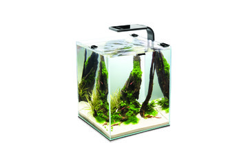 Аквариум AquaEl Shrimp Set Smart 10