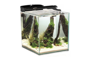 Аквариум AquaEl Shrimp Set Duo - 49 л